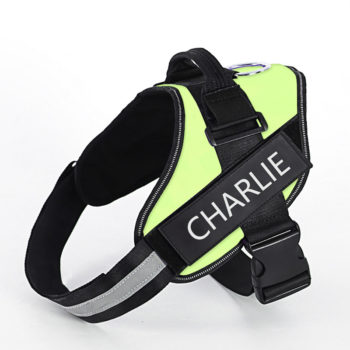 Custom Name Adjustable Dog Vest with Name Personalized Breast Strap Chest Sleeve