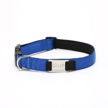Custom Multicolor Nylon Dog Collar with Name Personalized Pet Collar